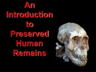 An Introduction to Preserved  Human  Remains