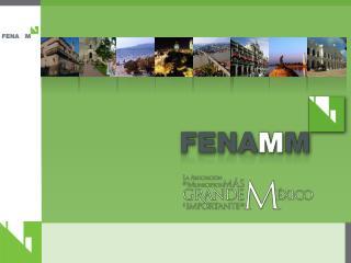 Agenda para la Construcción de Municipios Profesionales