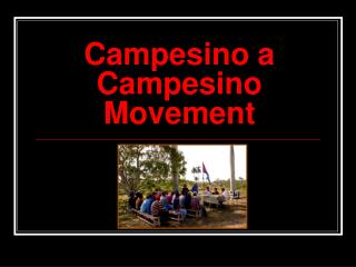 Campesino a Campesino Movement