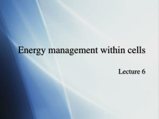 Energy management within cells