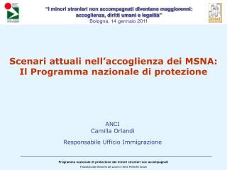 Scenari attuali nell'accoglienza dei MSNA: Il Programma nazionale di protezione
