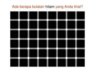 Ada berapa bulatan  hitam  yang Anda lihat?