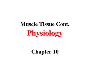 Muscle Tissue Cont. Physiology Chapter 10