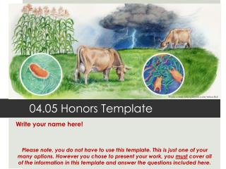 04.05 Honors Template
