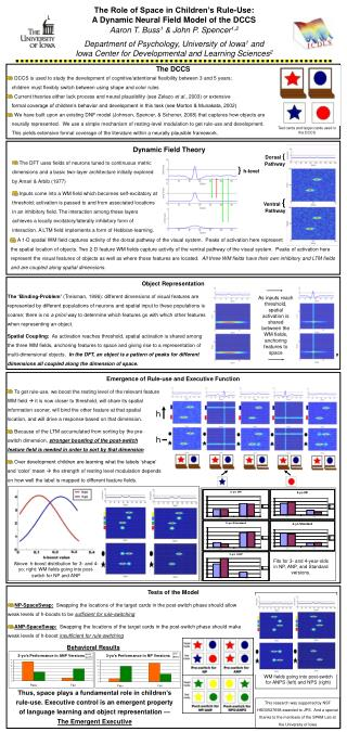 The Role of Space in Children's Rule-Use:  A Dynamic Neural Field Model of the DCCS
