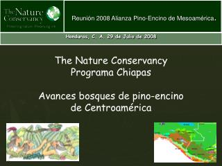 The Nature Conservancy Programa Chiapas Avances bosques de pino-encino  de Centroamérica