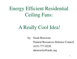 Energy Efficient Residential Ceiling Fans:  A Really Cool Idea!