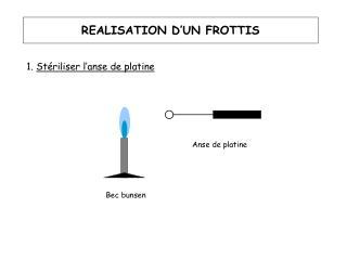 REALISATION D'UN FROTTIS