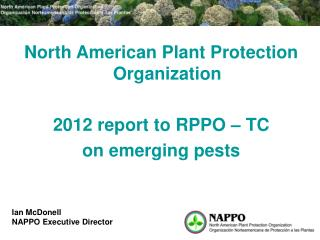 North American Plant Protection Organization 2012 report to RPPO – TC on emerging pests