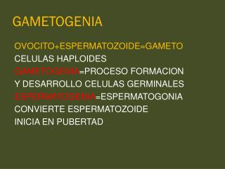 GAMETOGENIA