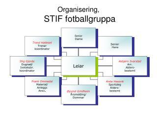 Organisering,  STIF fotballgruppa