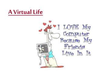 A Virtual Life