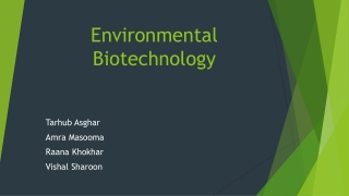 Process development of cell and endotoxin  production of Bacillus thuringiensis var kurstaki