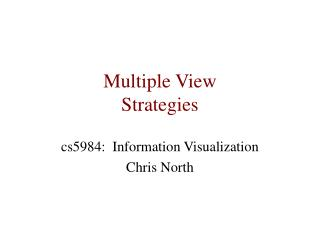 Multiple View  Strategies
