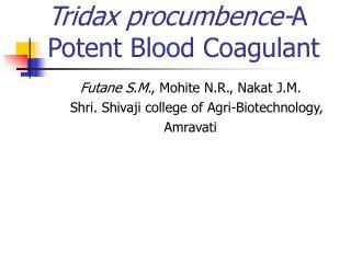 Tridax procumbence-A Potent Blood Coagulant