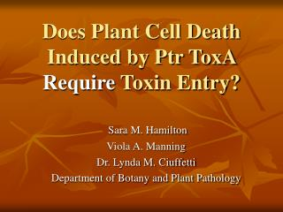 Does Plant Cell Death Induced by Ptr ToxA Require Toxin Entry
