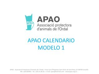 APAO CALENDARIO MODELO 1