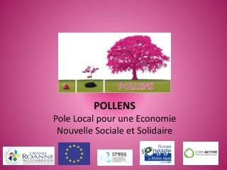 POLLENS Pole Local pour une Economie Nouvelle Sociale et Solidaire