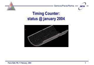 Timing Counter:  status @ january 2004