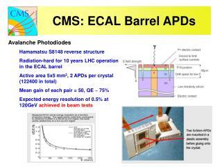 CMS: ECAL Barrel APDs