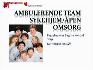 Fagsykepleier  Birgitte Kolstad Torp Korttidsposten  SØF
