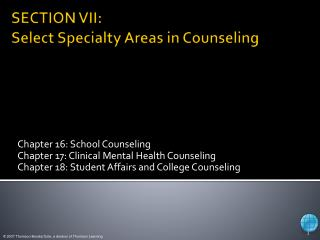 SECTION VII:  Select Specialty Areas in Counseling