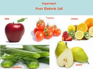 Experiment  Fruit Elektrik Cell
