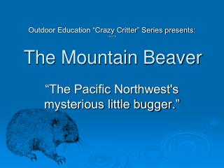 The Mountain Beaver