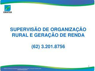 SUPERVISÃO DE ORGANIZAÇÃO RURAL E GERAÇÃO DE RENDA (62) 3.201.8756