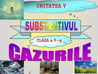 UNITATEA V