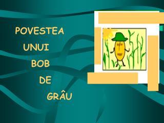 POVESTEA   UNUI     BOB        DE          GR�U