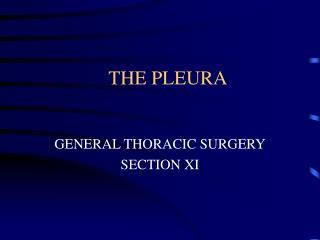 THE PLEURA
