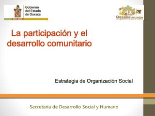 Estrategia de Organizaci�n Social