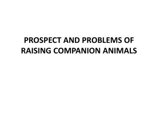 PROSPECT AND PROBLEMS OF RAISING COMPANION ANIMALS