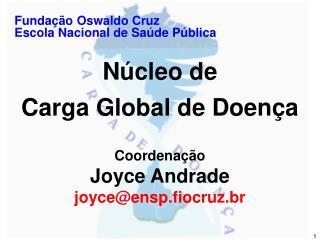 Fundação Oswaldo Cruz Escola Nacional de Saúde Pública Núcleo de Carga Global de Doença