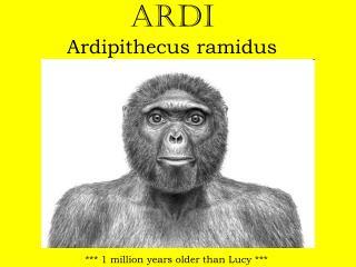 Ardi  Ardipithecus ramidus