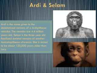 Ardi  &  Selam