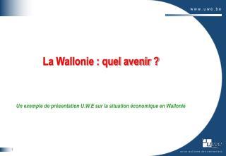 La Wallonie : quel avenir ?