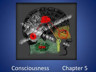 Consciousness         Chapter 5