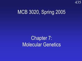 MCB 3020, Spring 2005 Chapter 7: Molecular Genetics