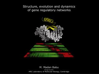 Structure, evolution and dynamics  of gene regulatory networks
