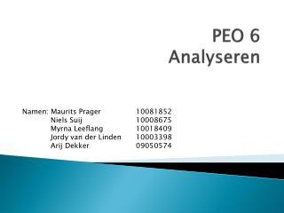 PEO 6 Analyseren