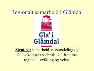 Regionalt samarbeid i Glåmdal
