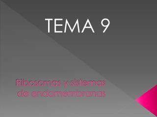 Ribosomas y sistemas de  endomembranas