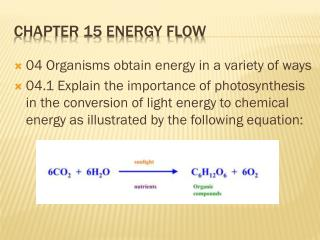 Chapter 15 Energy Flow