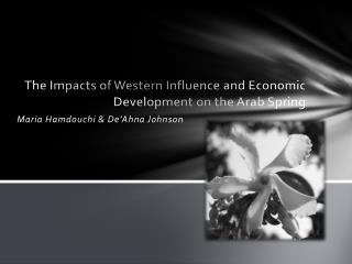 The Impacts of Western Influence and Economic Development on the Arab Spring