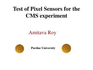 Test of Pixel Sensors for the CMS experiment