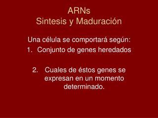ARNs Sintesis y Maduración