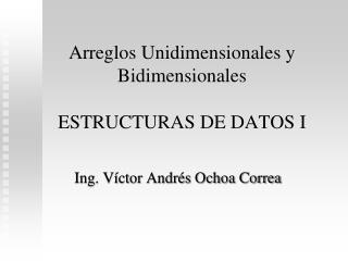 Arreglos Unidimensionales y Bidimensionales ESTRUCTURAS DE DATOS I