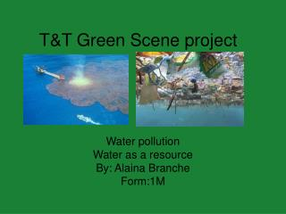 T&T Green Scene project